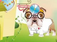 docteur bulldog